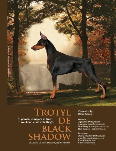 trotyl